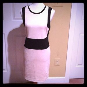 Sleeveless ColorBlock Dress.